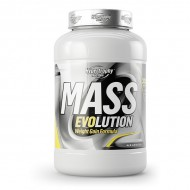 Mass Evolution